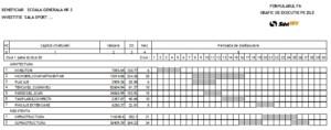 Formular F6 devize